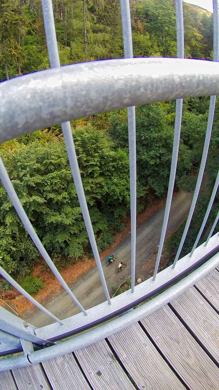 über 20 Meter nach unten, Baumwipfelpfad Bad Harzburg