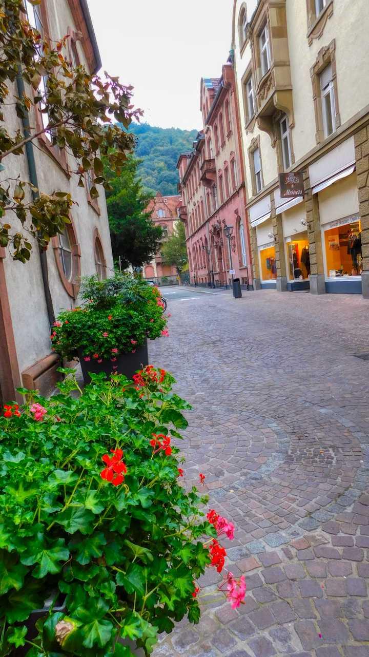 Heidelberg kleine Gasse
